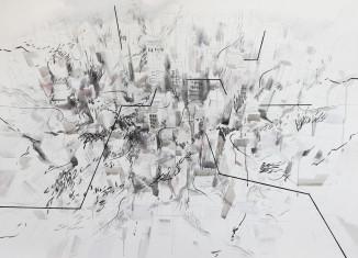 Brzozów -Wystawa pt. Everything I touch turns to lines, Katarzyna Adamek-Chase